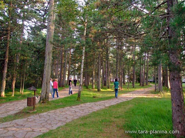Godišnjica Nacionalnog parka Tara