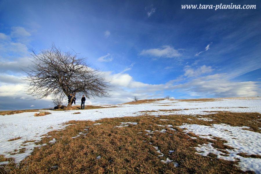 Novi zakoni o nacionalnim parkovima u 2012