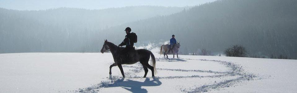 Konjički karavan na Tari
