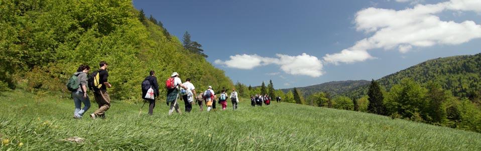 Novi zakoni o nacionalnim parkovima do kraja godine