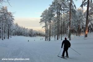 tara-kaludjerske-bare-skijanje