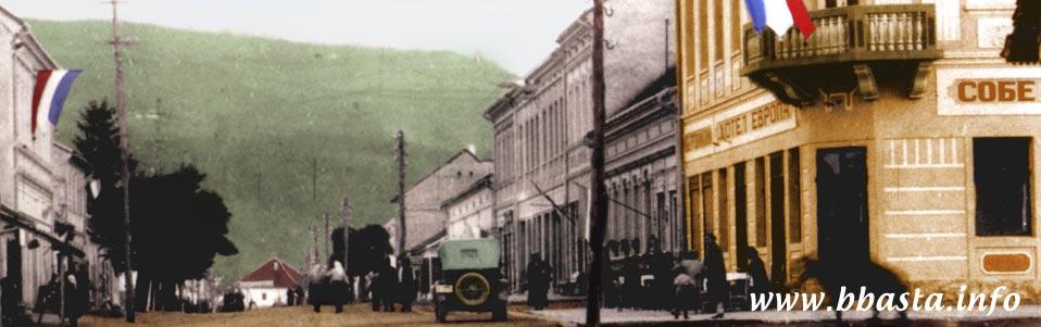 Poreklo prezimena, selo Beserovina (Bajina Bašta). Stanje iz 1930. godine.