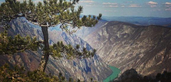 Jagoštica – selo u kojem se svi putevi završavaju