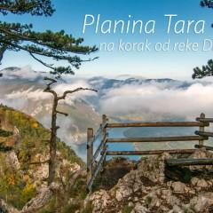 Planina Tara, na korak od reke Drine