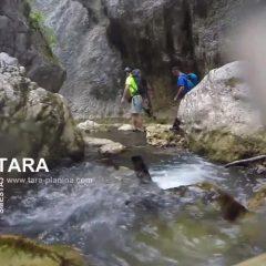 Avantura u Nacionalnom Parku Tara