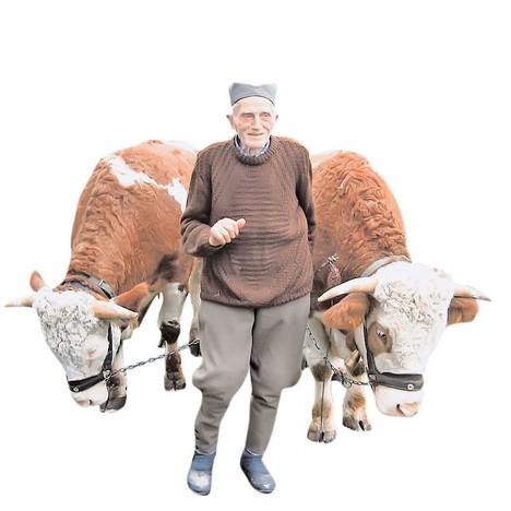 Uz volove i nadomak stotog leta