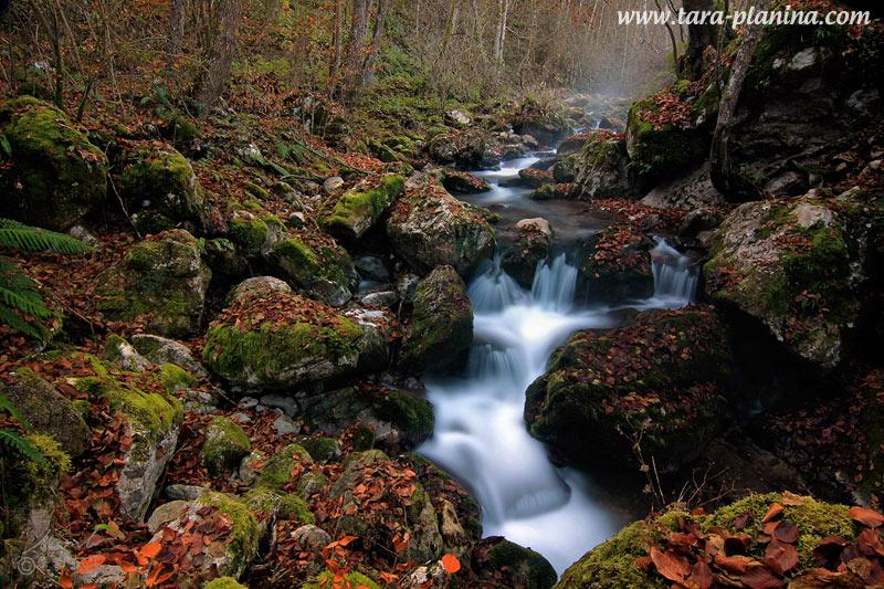 Studenti iz Slovačke posetili Nacionalni park